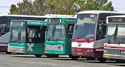 אוטובוסים בחניה